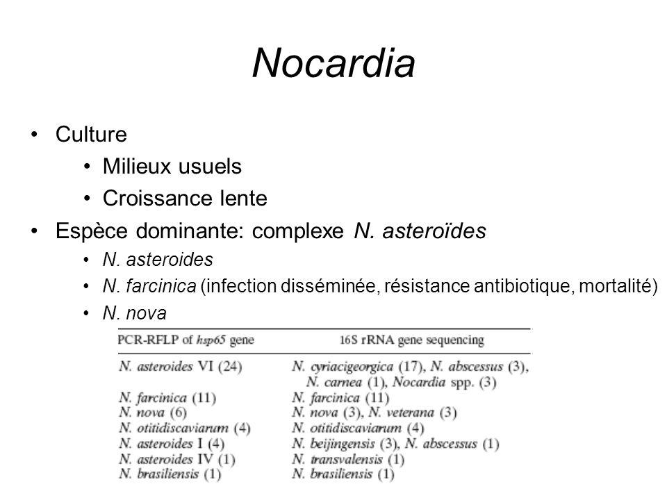 Nocardia Culture Milieux usuels Croissance lente Espèce dominante: complexe N. asteroïdes N. asteroides N. farcinica (infection disséminée, résistance