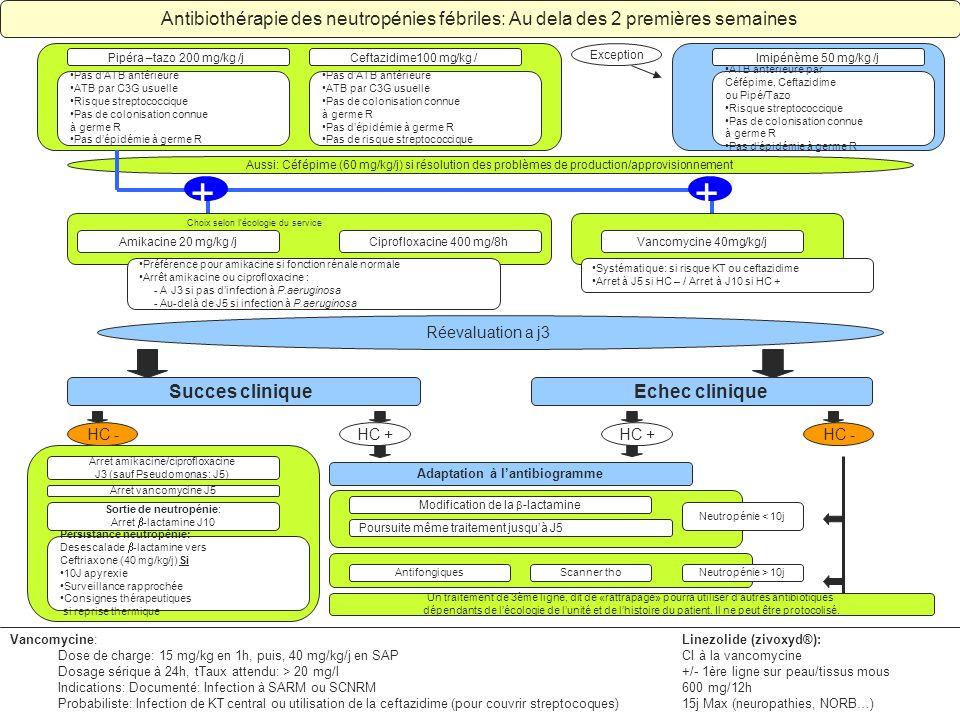 Adaptation à lantibiogramme Antibiothérapie des neutropénies fébriles: Au dela des 2 premières semaines Pas dATB antérieure ATB par C3G usuelle Risque