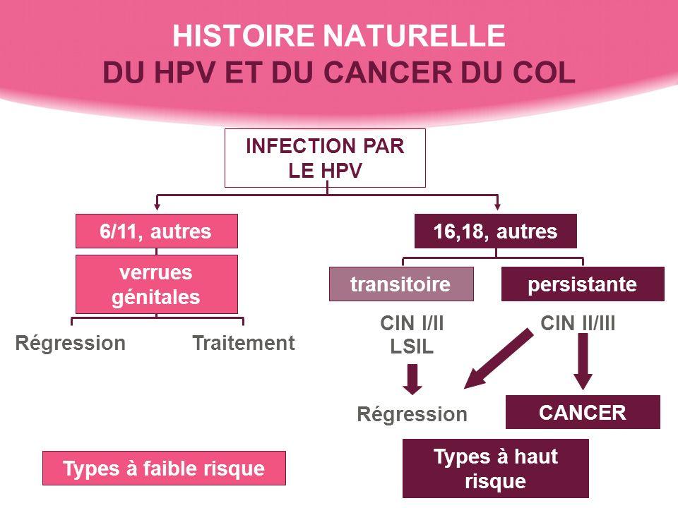 Histoire naturelle de linfection à HPV au cancer du col Lésion intra-épithéliale squameuse de bas grade (ASCUS/LSIL) Lésion intra-épithéliale squameuse de haut grade (HSIL) Carcinome invasif Dépistage Traitement Temps Années Mois Epithélium normal Infection à HPV; koïlocytose CIN I CIN II CIN III De linfection incidente à linfection persistante à HPV Régression spontanée