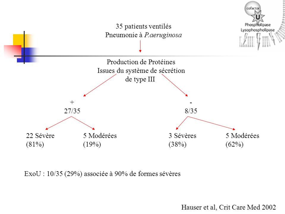 35 patients ventilés Pneumonie à P.aeruginosa Production de Protéines Issues du système de sécrétion de type III +27/35 -8/35 22 Sévère5 Modérées3 Sév