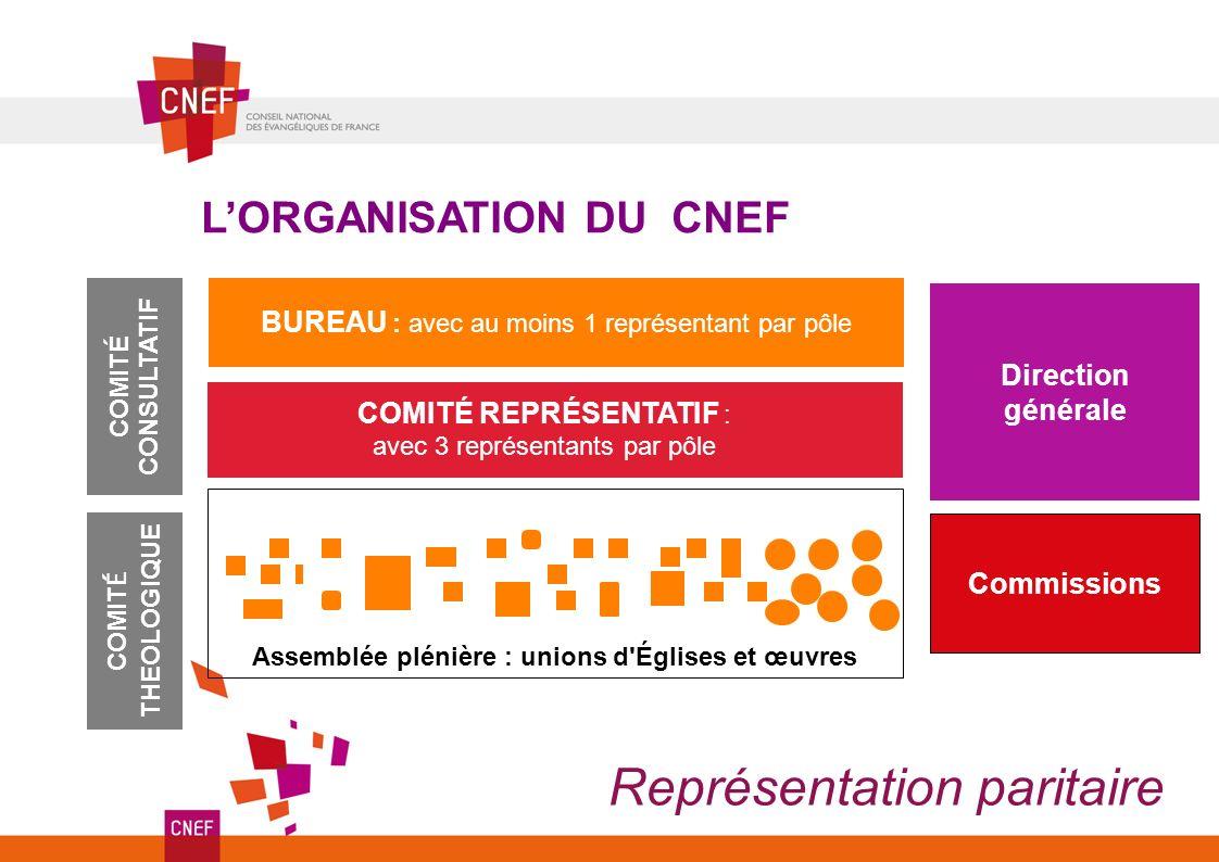 LORGANISATION DU CNEF BUREAU : avec au moins 1 représentant par pôle COMITÉ REPRÉSENTATIF : avec 3 représentants par pôle COMITÉ CONSULTATIF Représent