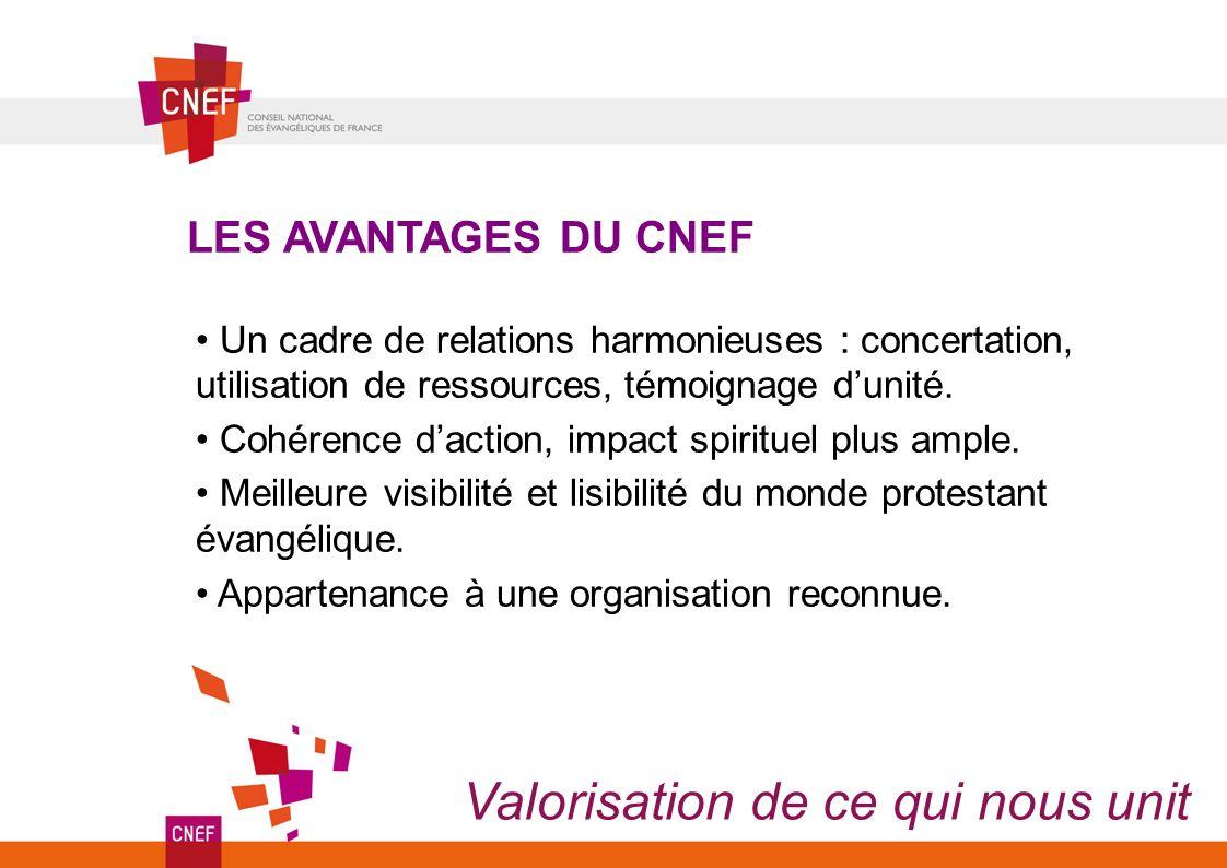Grande similitude entre les objectifs de l AEF et ceux du CNEF Pour simplifier le paysage, l AEF transfère au CNEF ses activités, ses engagements, sa vision...