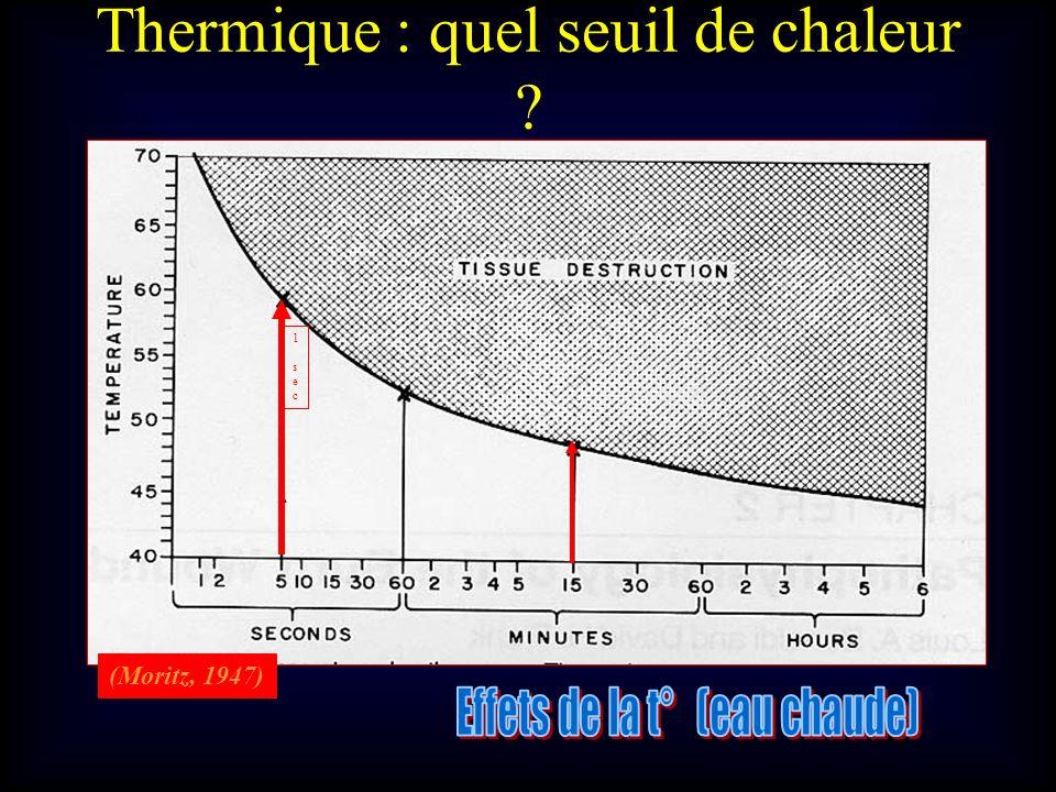 (Moritz, 1947) 1 sec1 sec Thermique : quel seuil de chaleur ?