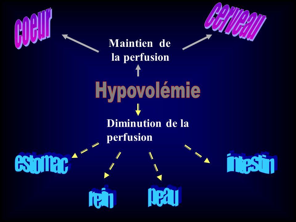 Maintien de la perfusion Diminution de la perfusion