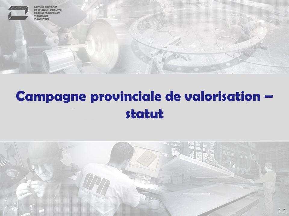 Campagne provinciale de valorisation – statut