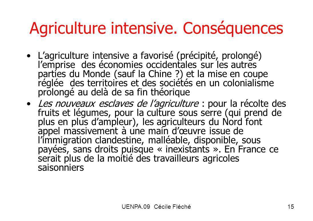 UENPA.09 Cécile Fléché15 Agriculture intensive.