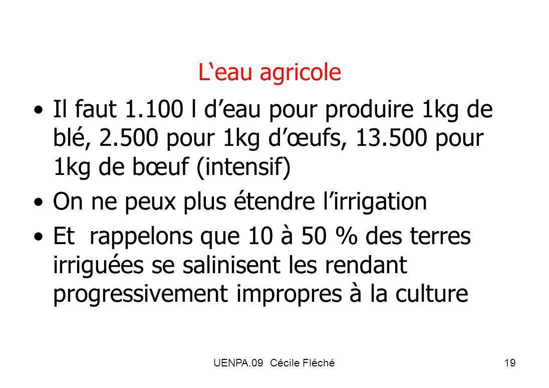 UENPA.09 Cécile Fléché19 Leau agricole Il faut 1.100 l deau pour produire 1kg de blé, 2.500 pour 1kg dœufs, 13.500 pour 1kg de bœuf (intensif) On ne peux plus étendre lirrigation Et rappelons que 10 à 50 % des terres irriguées se salinisent les rendant progressivement impropres à la culture