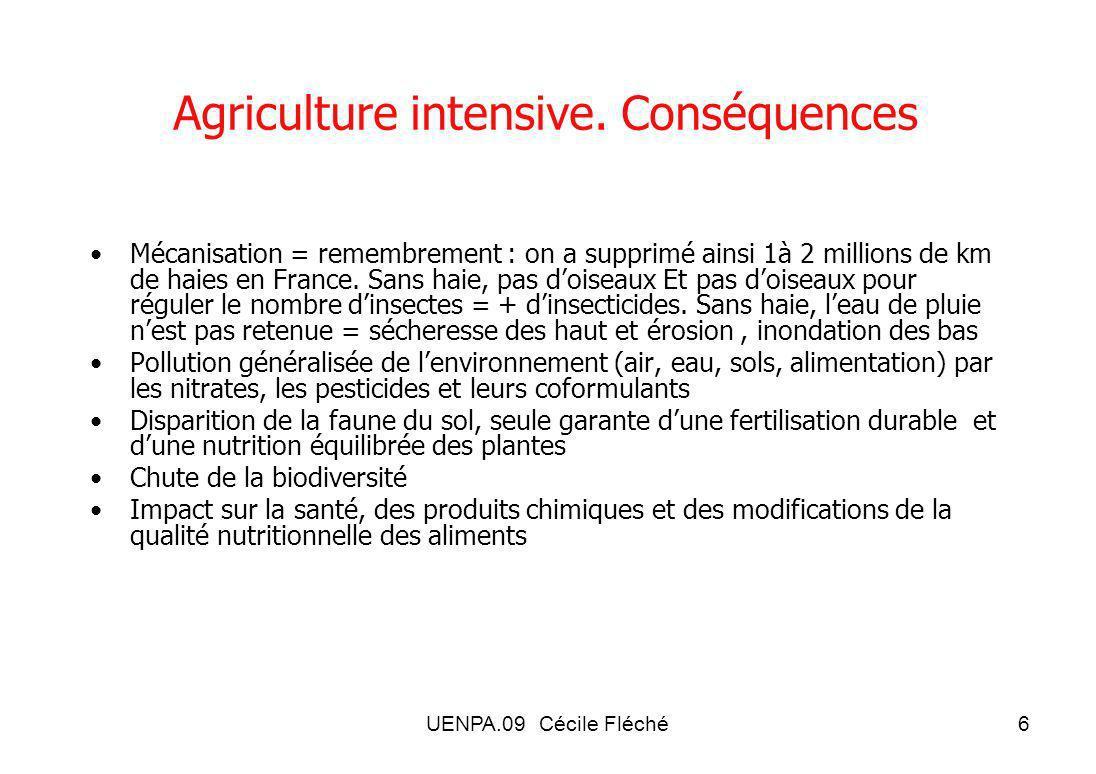 UENPA.09 Cécile Fléché6 Agriculture intensive.