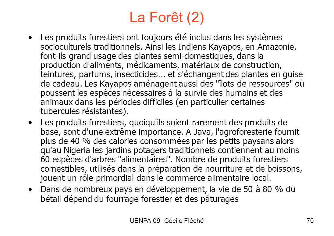 UENPA.09 Cécile Fléché70 La Forêt (2) Les produits forestiers ont toujours été inclus dans les systèmes socioculturels traditionnels.