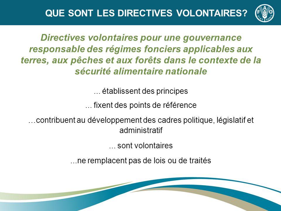 Directives volontaires pour une gouvernance responsable des régimes fonciers applicables aux terres, aux pêches et aux forêts dans le contexte de la s