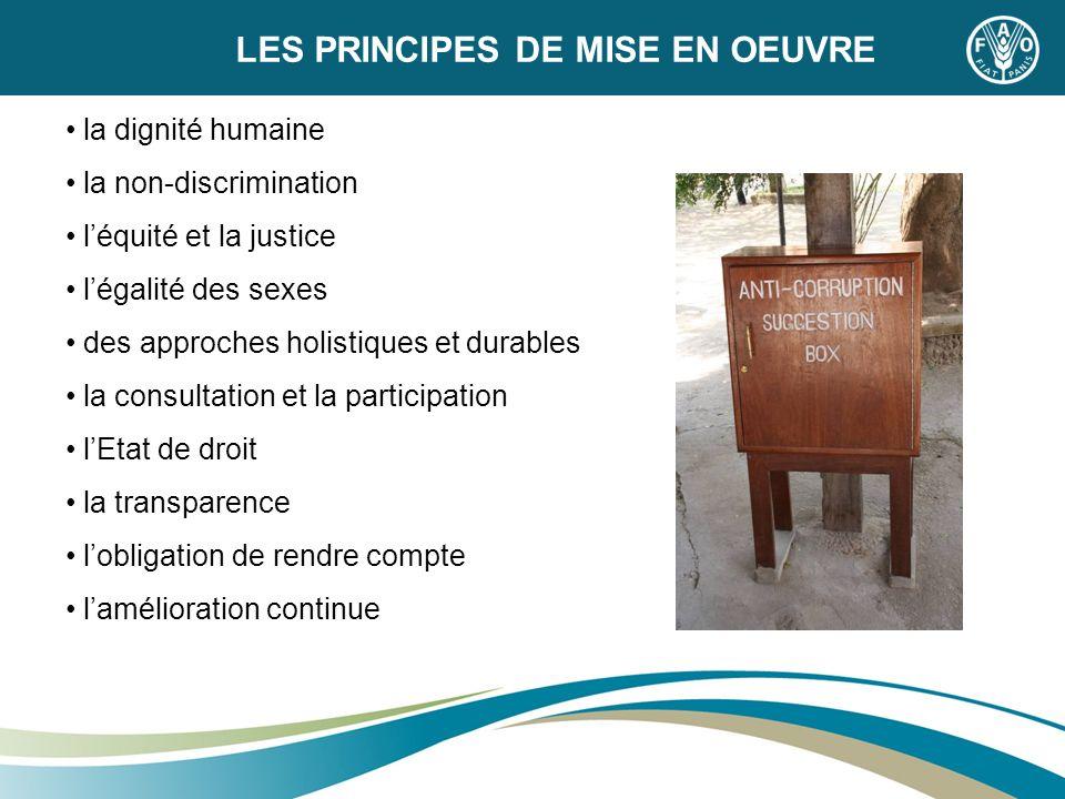 LES PRINCIPES DE MISE EN OEUVRE la dignité humaine la non-discrimination léquité et la justice légalité des sexes des approches holistiques et durable