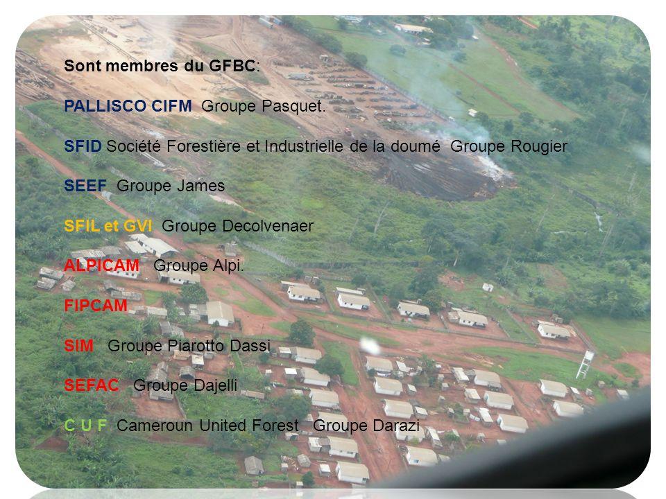 Sont membres du GFBC: PALLISCO CIFM Groupe Pasquet. SFID Société Forestière et Industrielle de la doumé Groupe Rougier SEEF Groupe James SFIL et GVI G
