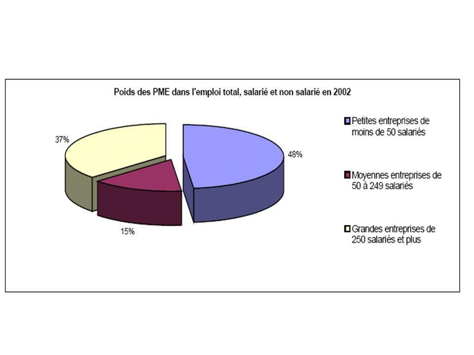 Le poids des PME dans léconomie 50% des entreprises françaises ont moins de 50 salariés (PE).