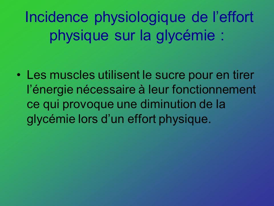 Incidence physiologique de leffort physique sur la glycémie : Les muscles utilisent le sucre pour en tirer lénergie nécessaire à leur fonctionnement c