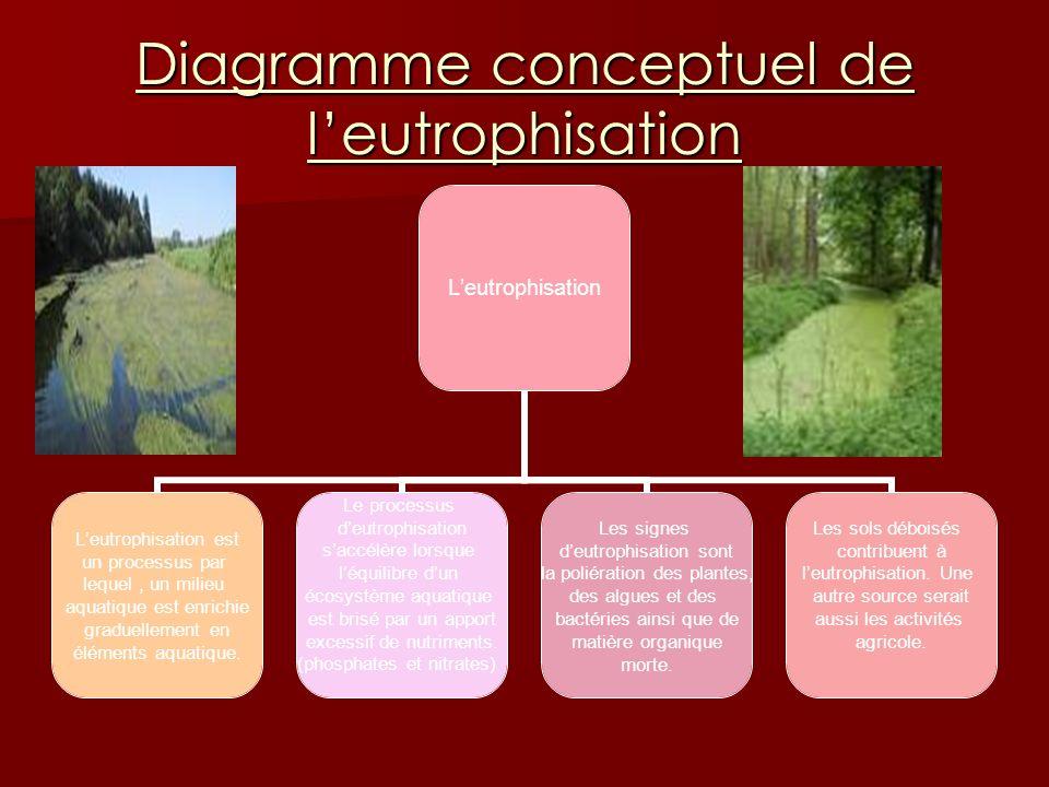 Diagramme conceptuel de leutrophisation Leutrophisation Leutrophisation est un processus par lequel, un milieu aquatique est enrichie graduellement en éléments aquatique.