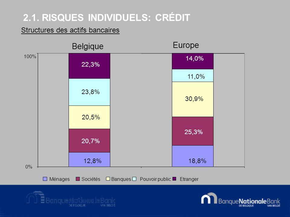 2.1. RISQUES INDIVIDUELS: CRÉDIT 12,8% 18,8% 20,7% 25,3% 20,5% 30,9% 23,8% 11,0% 22,3% 14,0% 0% 100% MénagesSociétésBanquesPouvoir publicEtranger Stru