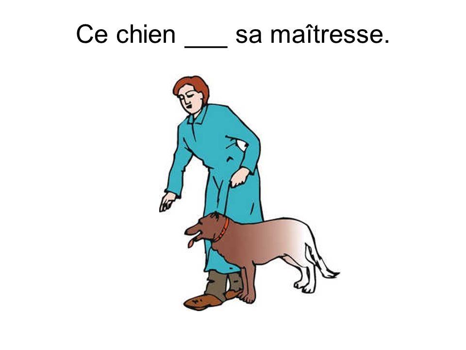 Ce chien ___ sa maîtresse.
