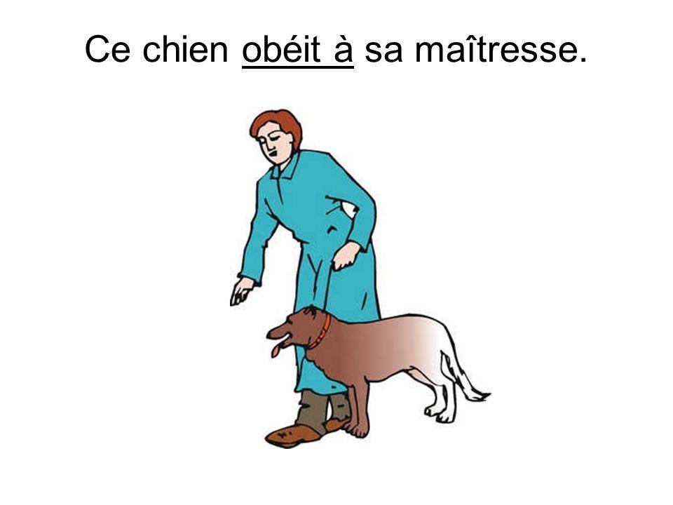Ce chien obéit à sa maîtresse.