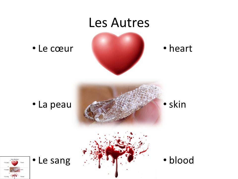Les Autres Le cœur La peau Le sang heart skin blood