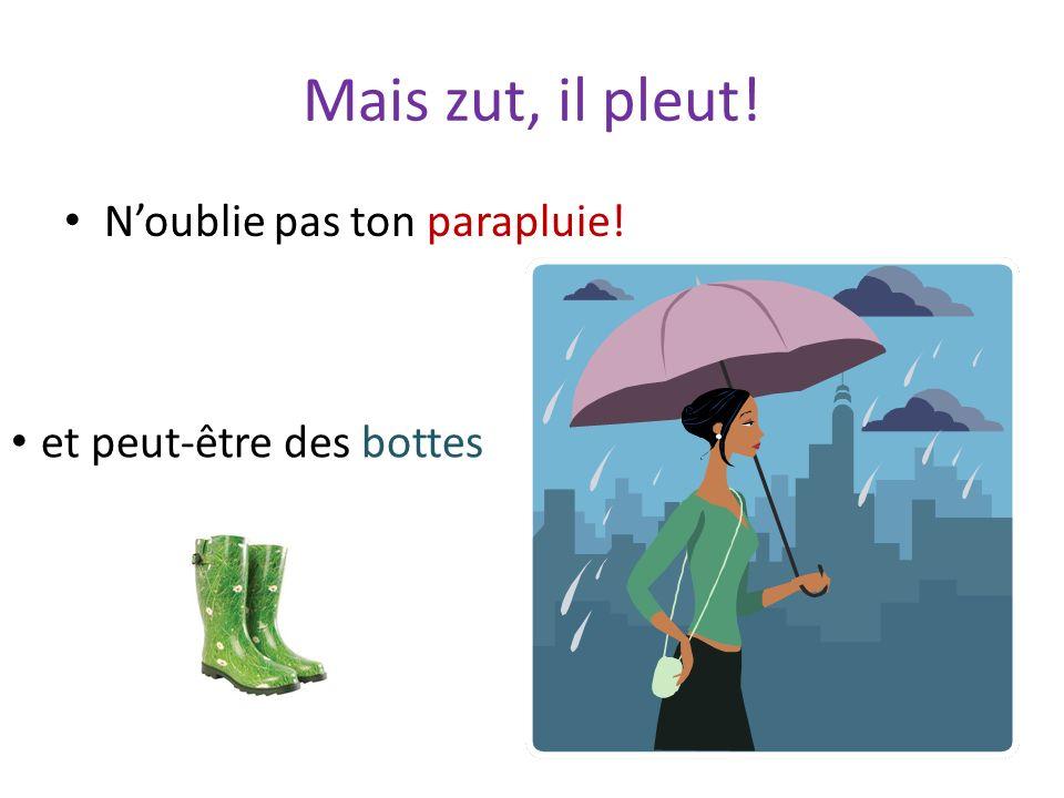 Mais zut, il pleut! Noublie pas ton parapluie! et peut-être des bottes