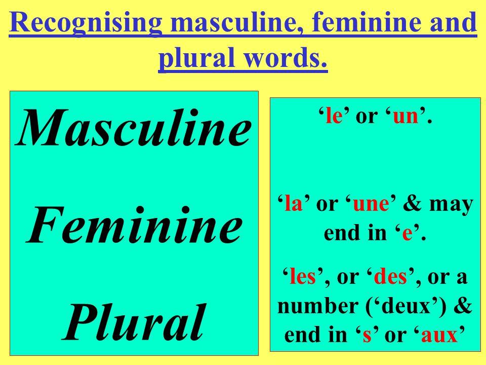 Here are some examples. le stylo(masculine). le professeur(masculine). un crayon(masculine). un lapin(masculine). la gomme(feminine). la tortue(femini