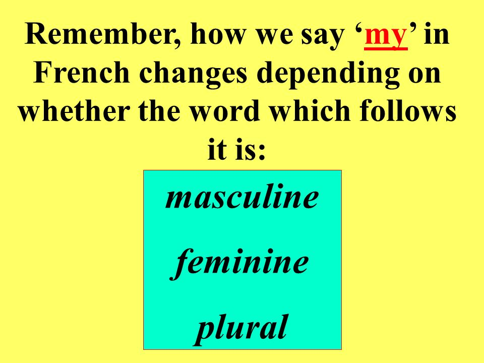 Remember, how we say my in French changes depending on whether the word which follows it is: masculine feminine plural