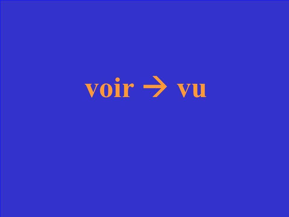 Quel est le participe passé du verbe voir?