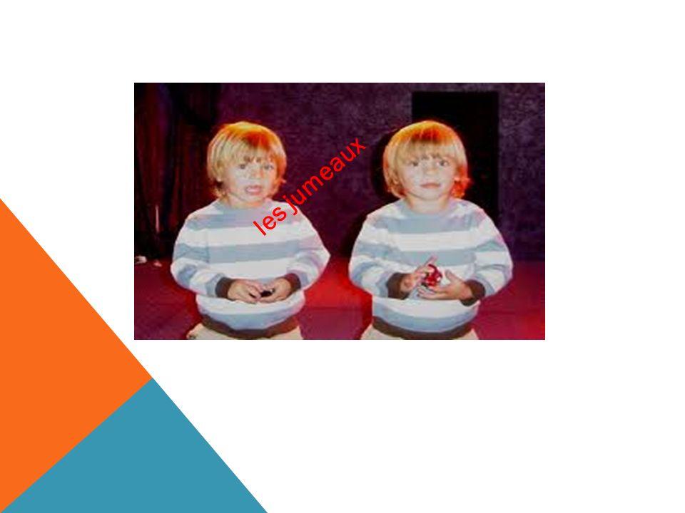 ??? les jumeaux