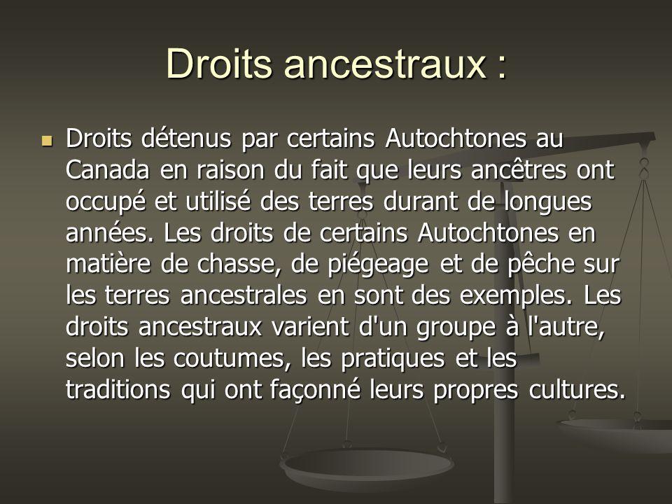 Droits ancestraux : Droits détenus par certains Autochtones au Canada en raison du fait que leurs ancêtres ont occupé et utilisé des terres durant de longues années.