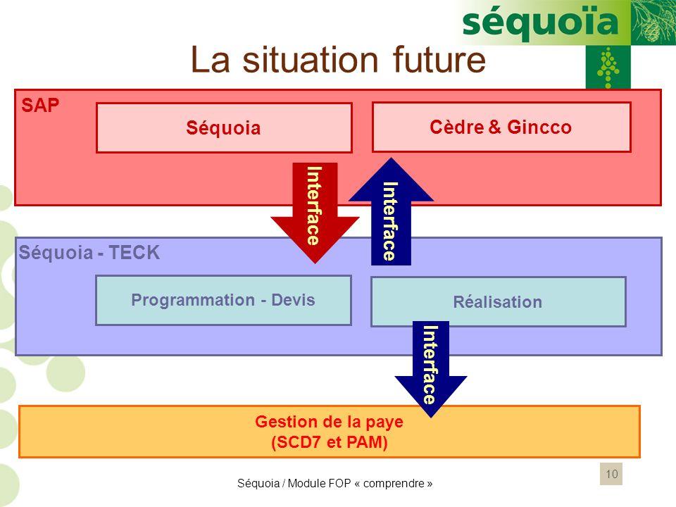 10 SAP Séquoia - TECK Interface Gestion de la paye (SCD7 et PAM) Interface Séquoia / Module FOP « comprendre » La situation future Séquoia Programmati