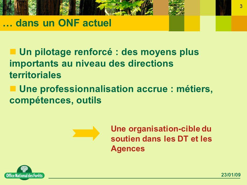 23/01/09 3 … dans un ONF actuel Un pilotage renforcé : des moyens plus importants au niveau des directions territoriales Une professionnalisation accr