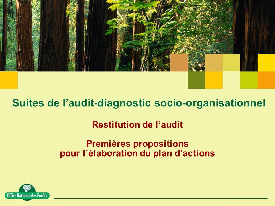 Suites de laudit-diagnostic socio-organisationnel Restitution de laudit Premières propositions pour lélaboration du plan dactions