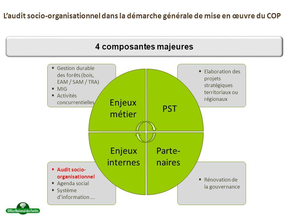 Laudit socio-organisationnel dans la démarche générale de mise en œuvre du COP 4 composantes majeures Gestion durable des forêts (bois, EAM / SAM / TRA) MIG Activités concurrentielles Audit socio- organisationnel Agenda social Système dinformation...