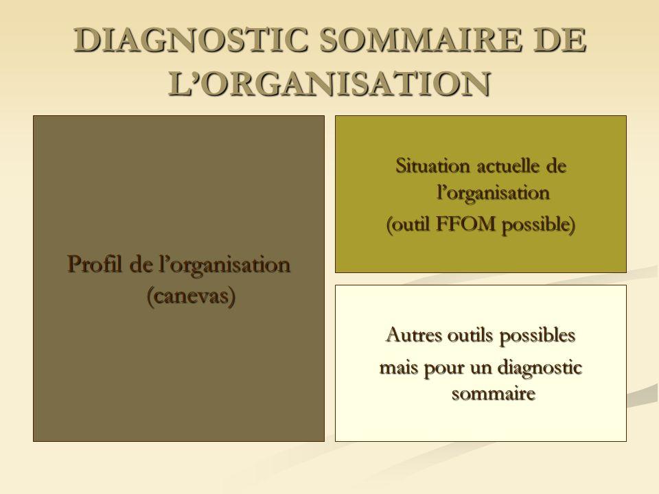 DIAGNOSTIC SOMMAIRE DE LORGANISATION Profil de lorganisation (canevas) Situation actuelle de lorganisation (outil FFOM possible) Autres outils possibles mais pour un diagnostic sommaire