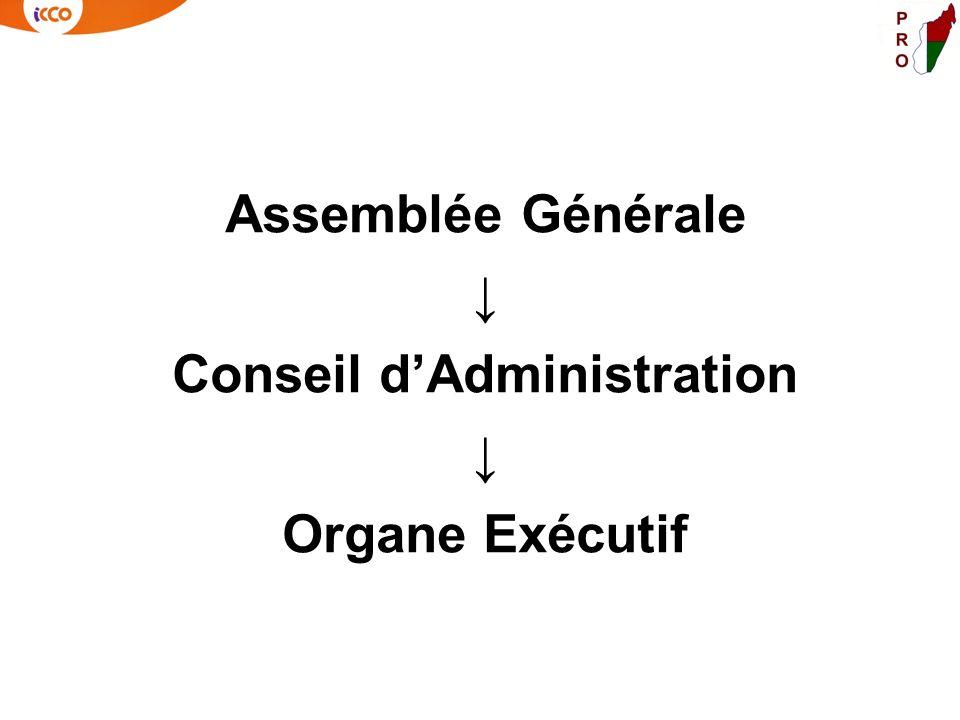 Assemblée Générale Conseil dAdministration Organe Exécutif