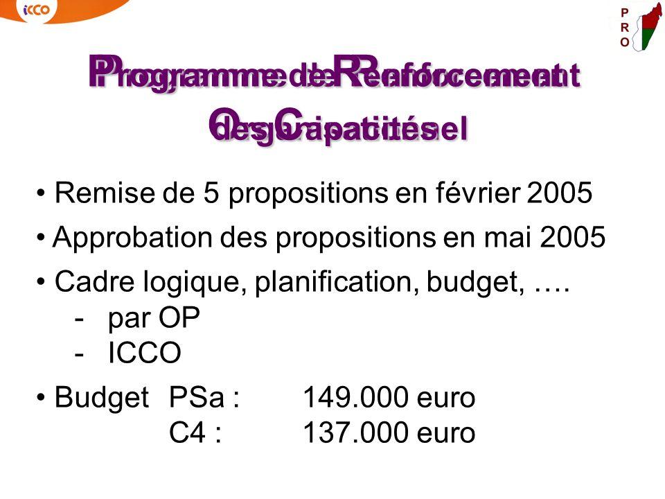 P rogramme de R enforcement O rganisationnel Remise de 5 propositions en février 2005 Approbation des propositions en mai 2005 Cadre logique, planific