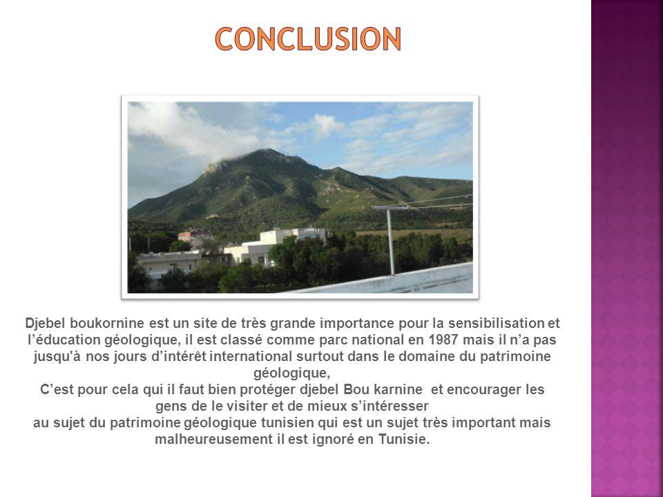 Djebel boukornine est un site de très grande importance pour la sensibilisation et léducation géologique, il est classé comme parc national en 1987 ma