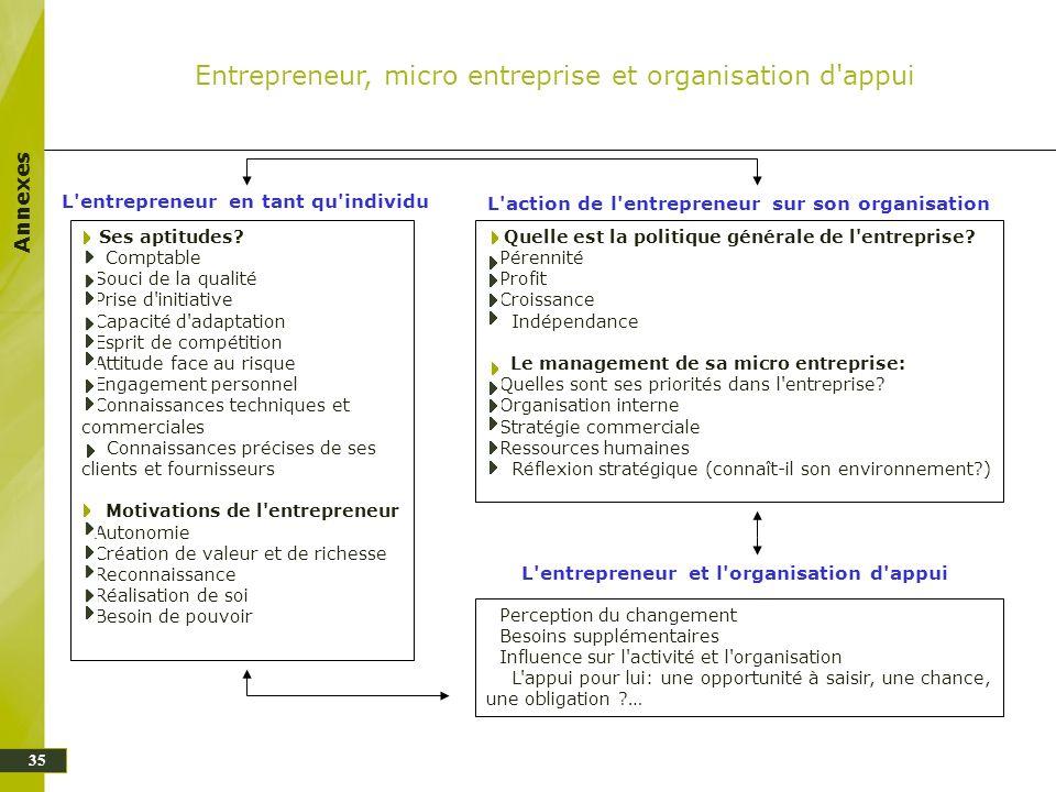 Annexes 35 Entrepreneur, micro entreprise et organisation d'appui L'entrepreneur en tant qu'individu L'action de l'entrepreneur sur son organisation L