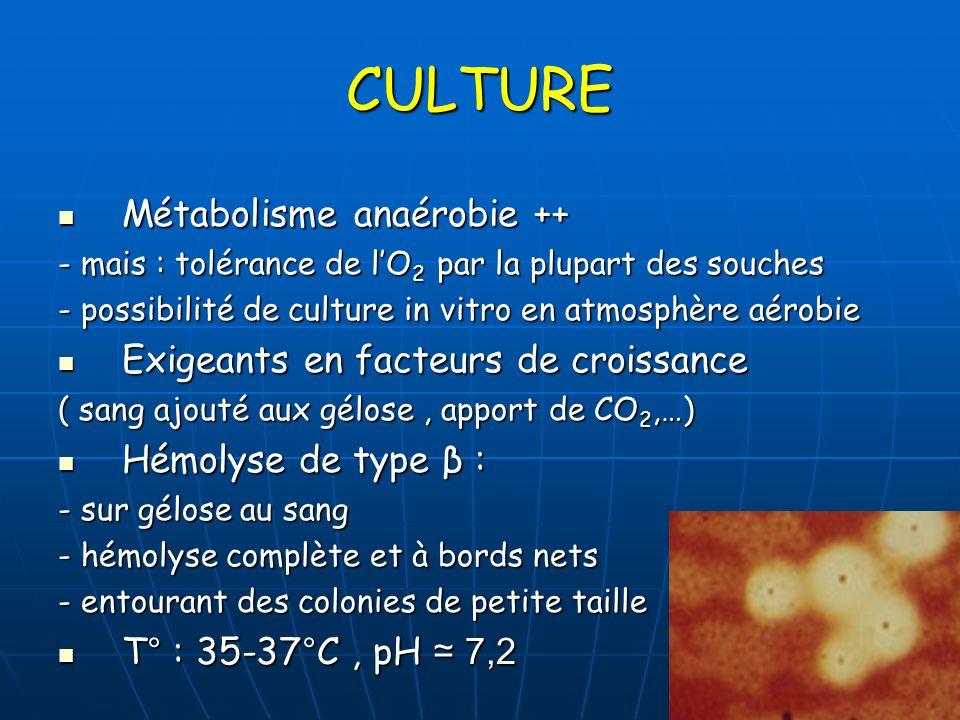 CULTURE Métabolisme anaérobie ++ Métabolisme anaérobie ++ - mais : tolérance de lO 2 par la plupart des souches - possibilité de culture in vitro en a
