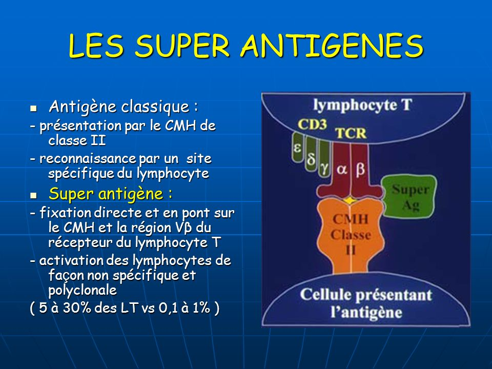 LES SUPER ANTIGENES Antigène classique : Antigène classique : - présentation par le CMH de classe II - reconnaissance par un site spécifique du lympho