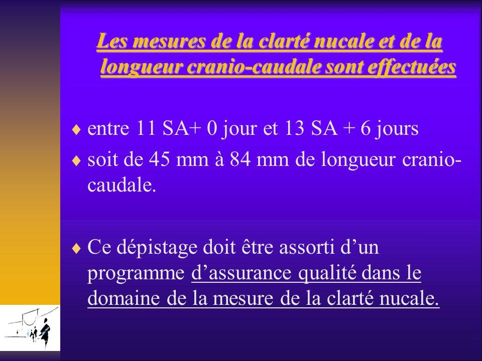 Les mesures de la clarté nucale et de la longueur cranio-caudale sont effectuées entre 11 SA+ 0 jour et 13 SA + 6 jours soit de 45 mm à 84 mm de longu