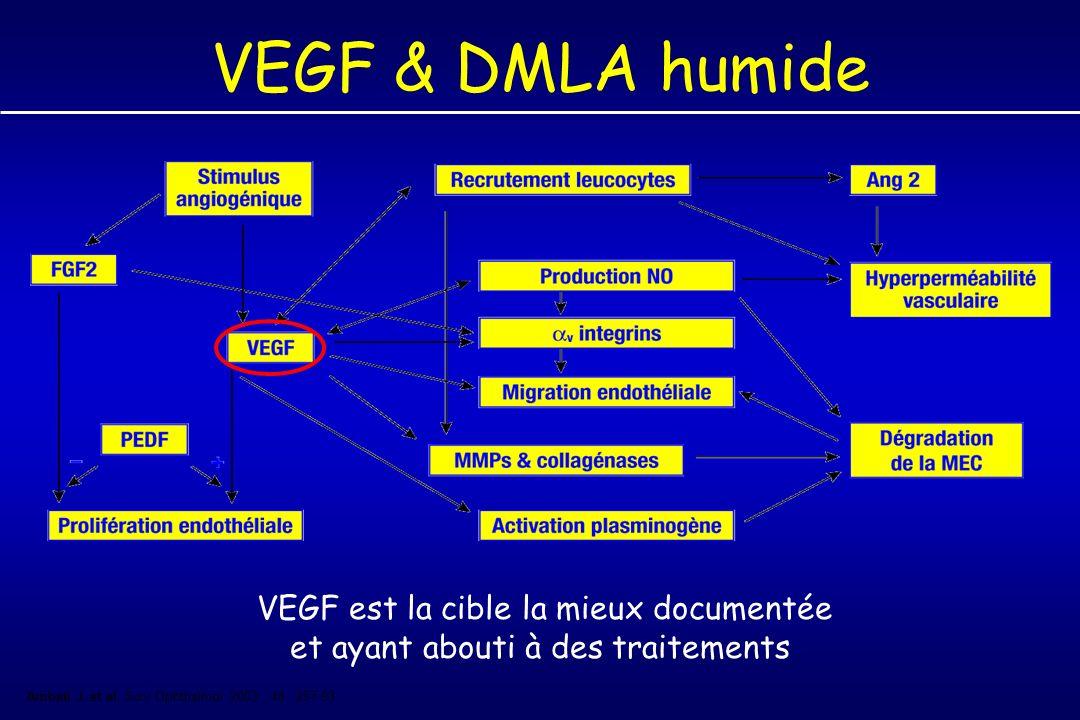 VEGF & DMLA humide VEGF est la cible la mieux documentée et ayant abouti à des traitements Ambati J.