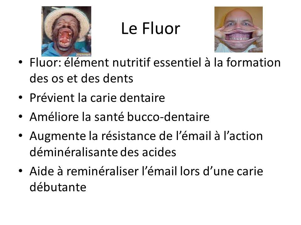 Le Fluor Fluor: élément nutritif essentiel à la formation des os et des dents Prévient la carie dentaire Améliore la santé bucco-dentaire Augmente la résistance de lémail à laction déminéralisante des acides Aide à reminéraliser lémail lors dune carie débutante