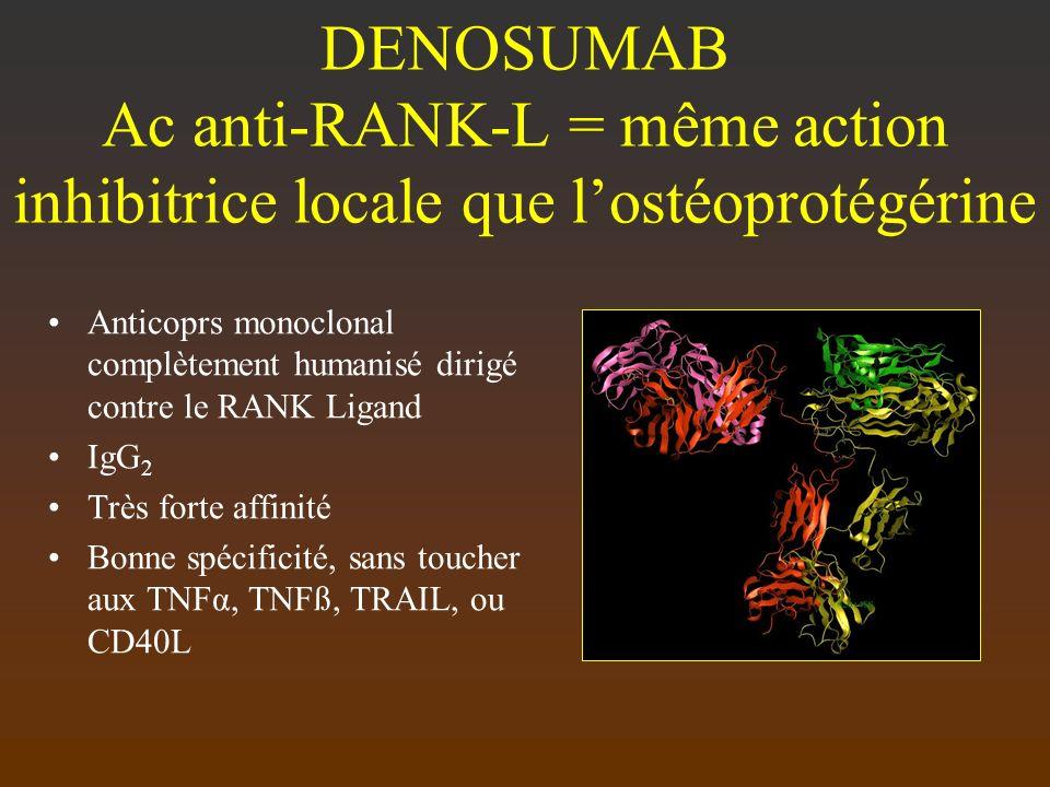 DENOSUMAB Ac anti-RANK-L = même action inhibitrice locale que lostéoprotégérine Anticoprs monoclonal complètement humanisé dirigé contre le RANK Ligan