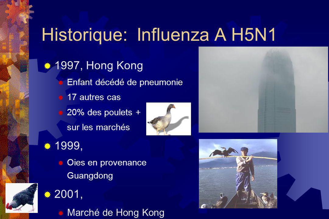 Historique: Influenza A H5N1 1997, Hong Kong Enfant décédé de pneumonie 17 autres cas 20% des poulets + sur les marchés 1999, Oies en provenance Guang