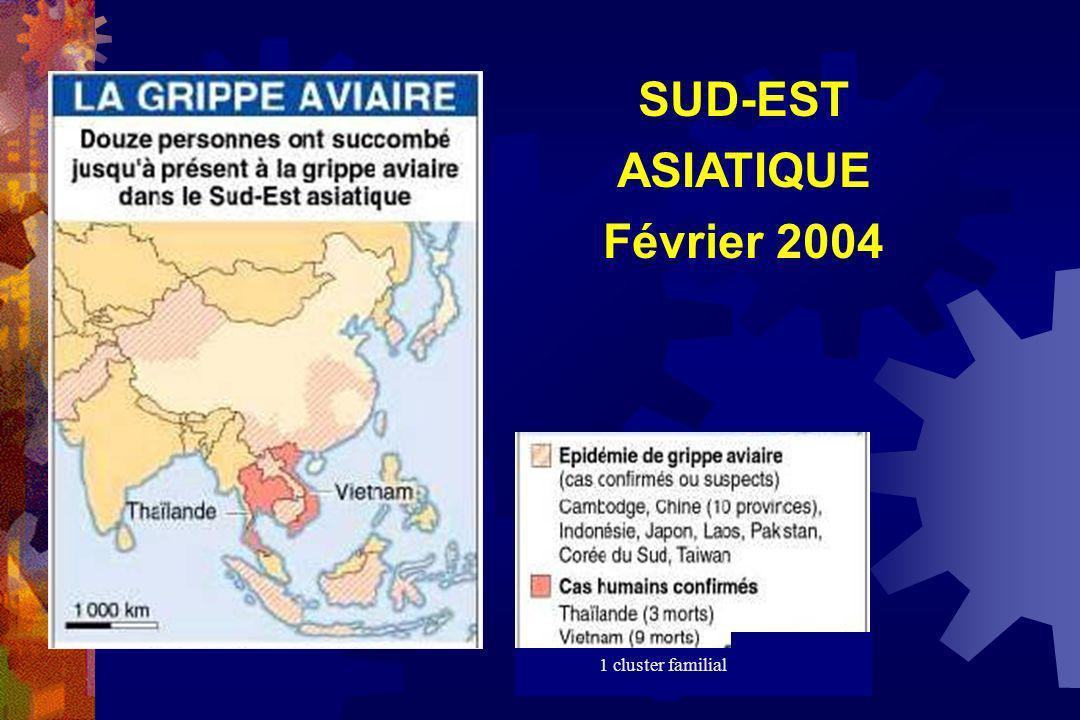 SUD-EST ASIATIQUE Février 2004 1 cluster familial