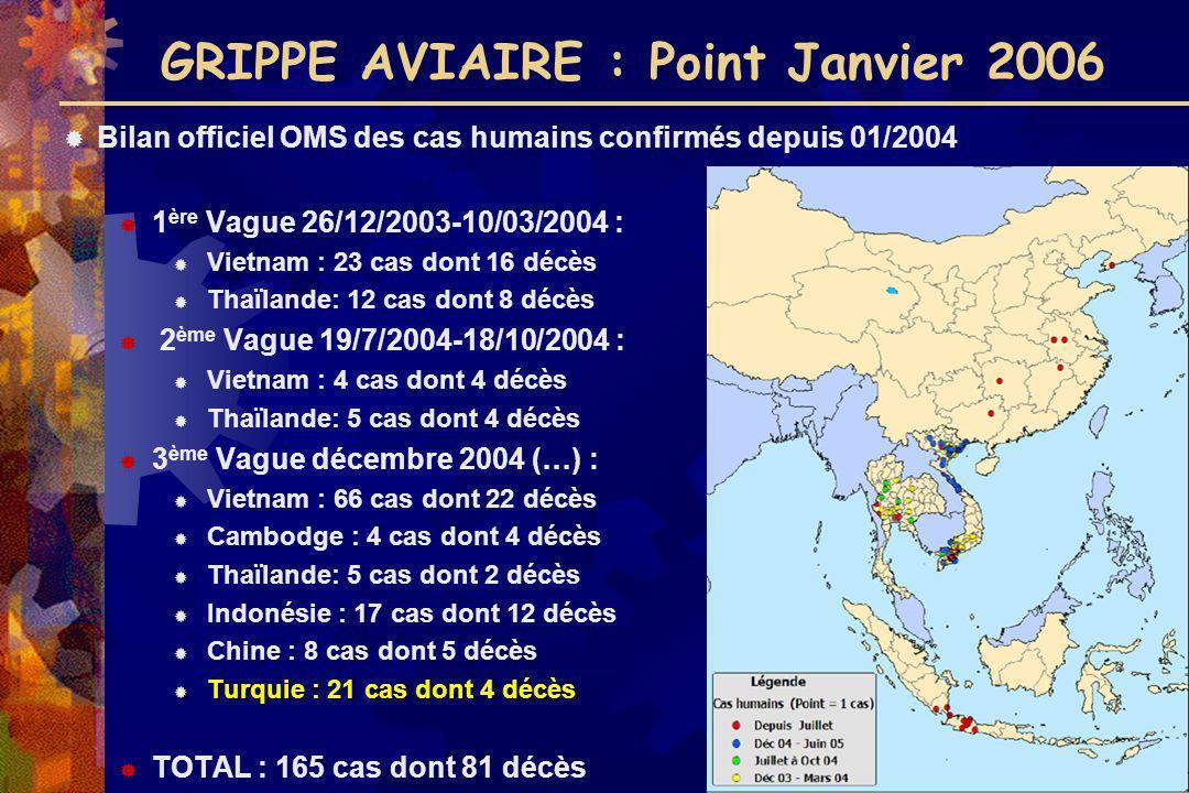 GRIPPE AVIAIRE : Point Janvier 2006 Bilan officiel OMS des cas humains confirmés depuis 01/2004 1 ère Vague 26/12/2003-10/03/2004 : Vietnam : 23 cas d