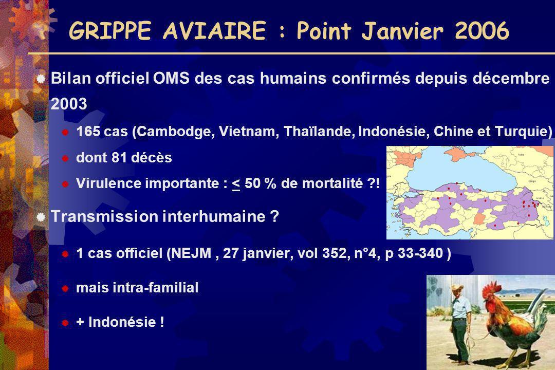 GRIPPE AVIAIRE : Point Janvier 2006 Bilan officiel OMS des cas humains confirmés depuis décembre 2003 165 cas (Cambodge, Vietnam, Thaïlande, Indonésie