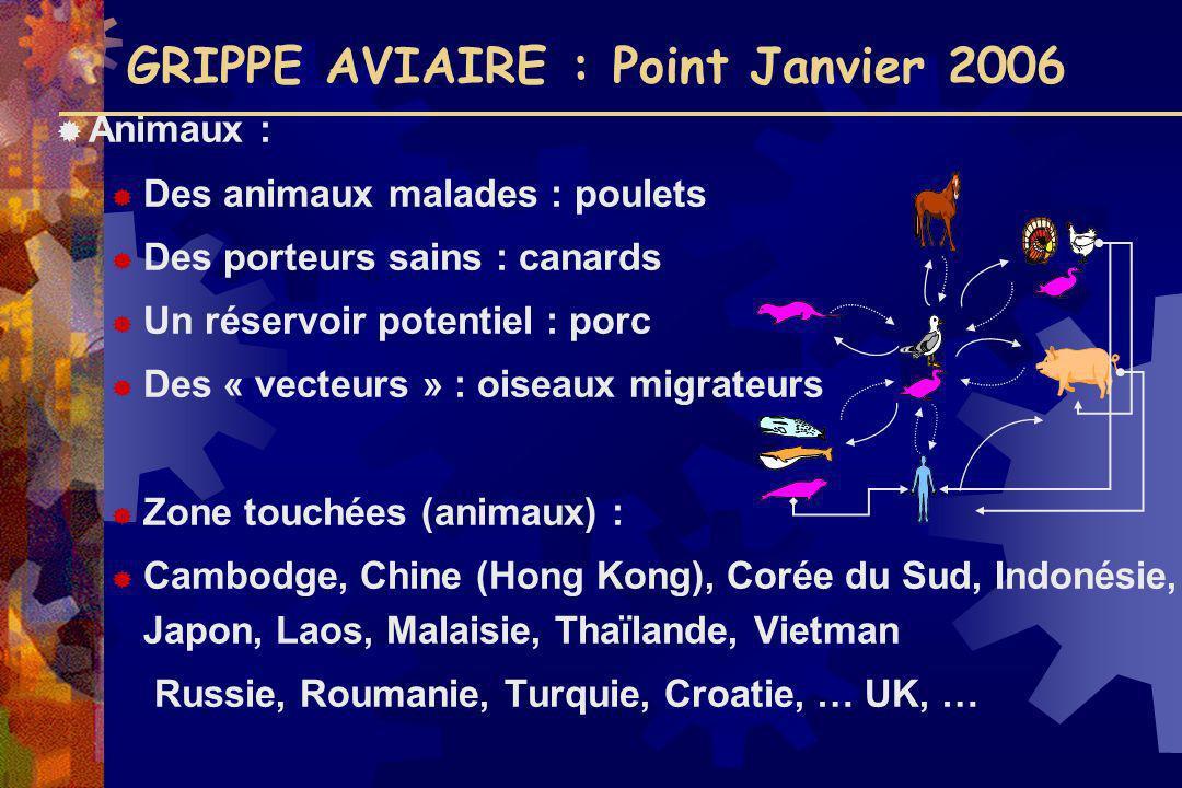 GRIPPE AVIAIRE : Point Janvier 2006 Animaux : Des animaux malades : poulets Des porteurs sains : canards Un réservoir potentiel : porc Des « vecteurs