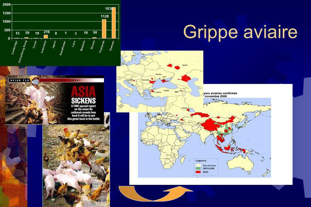 Grippe aviaire 1838 1128 50 10 1 1 8 15 59 19 216 0 500 1000 1500 2000 Cambodge Chine/Hong Kong Corée Indonésie Japon Kazakhstan Laos Malaisie Russie